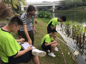 Geographical Field Trip to Punggol Waterway